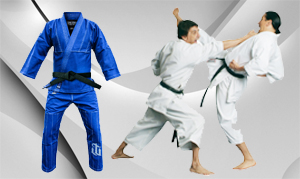 BJJ Karate Suites